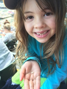Not quite the same as catching a foul ball, but losing a tooth is still pretty cool.